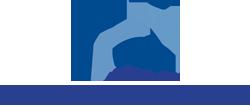 stepway-logo[1]
